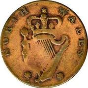 USA Halfpenny 1795 KM# Tn81.1 Washington Pieces NORTH WALES coin reverse