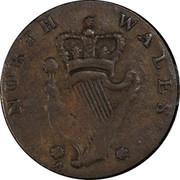 USA Halfpenny 1795 KM# Tn81.2 Washington Pieces NORTH WALES coin reverse