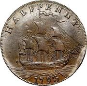 USA Halfpenny 1793 KM# Tn66.1 Washington Pieces HALFPENNY coin reverse