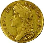 UK 5 Guineas James II 1687 KM# 460.2 IACOBVS∙II∙ DEI∙GRATIA coin obverse