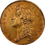 UK 5 Guineas James II 1687 KM# 460.1 IACOBVS∙II∙ DEI∙GRATIA coin obverse