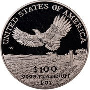 USA $100 American Eagle 2000 W KM# 317 UNITED STATES OF AMERICA .9995 PLATINUM 1 OZ $100 W coin reverse