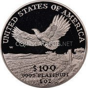 USA $100 One hundred Dollars Platinum American Eagle 2000 W KM# 317 UNITED STATES OF AMERICA .9995 PLATINUM 1 OZ $100 W coin reverse