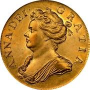 UK 5 Guineas Anne 1705 KM# 520.2 ANNA ∙ DEI ∙ GRATIA ∙ coin obverse