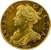 UK 5 Guineas Queen Anne 1703 KM# 520.1 ANNA ∙ DEI ∙ GRATIA ∙ coin obverse