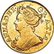 UK Guinea Anne 1713 KM# 534 ANNA ∙ DEI ∙ GRATIA ∙ coin obverse