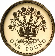 UK One Pound Northern Irish Flax 1991 Proof KM# 946 ONE POUND coin reverse