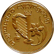 UK 1 Sovereign Welsh Dragon 1989 ARGRAFFIAD CYFYNGEDIG coin reverse