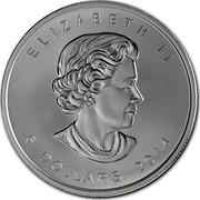 Canada 5 Dollars Golden Maple Leaf 2014 ELIZABETH II 5 DOLLARS YEAR SB coin obverse