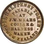 New Zealand Halfpenny Mears J.W. Wellington 1857 KM# Tn45 .ONE HALFPENNY TOKEN. NEW ZEALAND PAYABLE AT J.W.MEARS COLLAR & HARNESS MAKER coin reverse