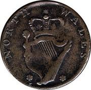 UK 1/2 Penny Georgivs Washington - North Wales ND (1792-1795)  * NORTH WALES * coin reverse