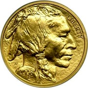 USA $10 Buffalo 2008 W KM# 412 LIBERTY W 2008 coin obverse