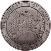 USA $25 American Eagle 2007 W Frosted Freedom, Rare KM# 415 THE UNITED STATES OF AMERICA FREEDOM 1/4 OZ. .9995 PLATINUM $25 coin reverse