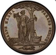 USA Half Dollar 1796 KM# Tn87.1a Castorland SALVE MAGNA PARENS FRUGUM coin reverse