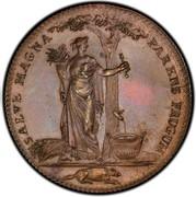 USA Half Dollar 1796 KM# Tn87.5 Castorland SALVE MAGNA PARENS FRUGUM coin reverse