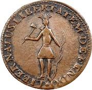 USA Neo Eboracus 1787 KM# 7 Nova Eboracs LIBERNATUS LIBERTATEM DEFENDO coin obverse
