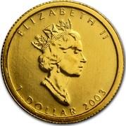 Canada 1 Dollar Maple Leaf 2003 KM# 238 ELIZABETH II 1 DOLLAR coin obverse