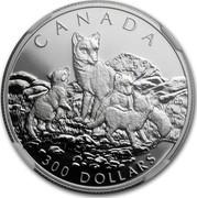 Canada 300 Dollars Arctic fox 1993 Proof KM# 243 CANADA 300 DOLLARS CD coin reverse