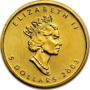 Canada 5 Dollars Maple Leaf 2003 KM# 188 ELIZABETH II 5 DOLLARS coin obverse