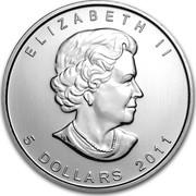 Canada 5 Dollars Wildlife Series - Grizzly 2012 UNC ELIZABETH II 5 DOLLARS 2011 coin obverse