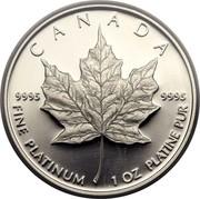Canada 50 Dollars Maple Leaf 1989 Proof KM# 167 CANADA 9995 9995 FINE PLATINUM 1 OZ PLATINE PUR coin reverse