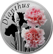 Belarus 10 Roubles The Carnation 2013 Proof KM# 518 DIANTHUS coin reverse