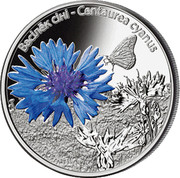 Belarus 10 Roubles The Cornflower 2012 Proof KM# 424 ВАСІЛЁК СІНІ CENTAUREA CYANUS coin reverse