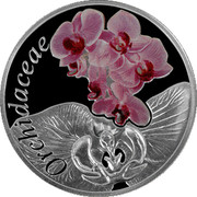 Belarus 10 Roubles The Orchid 2013 Proof KM# 516 ORCHIDACEAE coin reverse