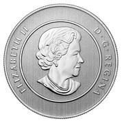 Canada 20 Dollars Canada Goose 2014 KM# 1561 ELIZABETH II D∙G∙REGINA coin obverse