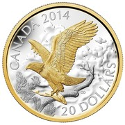 Canada 20 Dollars Perched Bald Eagle 2014 Proof KM# 1736 CANADA 2014 CD 20 DOLLARS coin reverse