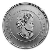 Canada 20 Dollars Snowman 2014 KM# 1777 ELIZABETH II D∙G∙REGINA coin obverse