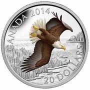 Canada 20 Dollars Soaring Bald Eagle 2014 Proof KM# 1737 CANADA 2014 CD 20 DOLLARS coin reverse