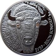 Belarus 20 Roubles Bison 2012 Proof KM# 420 ЗУБР BISON BONASUS coin reverse