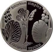 Belarus 20 Roubles Botrychium simplex 2014 Proof KM# 459 BOTRYCHIUM SIMPLEX ГРАЗДОЎНІК ПРОСТЫ coin reverse
