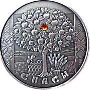 Belarus 20 Roubles Spasy 2009 Antique finish KM# 198 СПАСЫ coin reverse