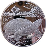 Belarus 20 Roubles The Middle Reaches of the Prypyat River 2010 Proof KM# 225 БАЛОТНАЯ ЧАРАПАХА coin reverse