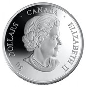 Canada 30 Dollars Fifth Anniversary of Canadarm 2006 Proof KM# 668 30 DOLLARS ∙ CANADA ∙ ELIZABETH II coin obverse