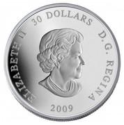 Canada 30 Dollars International Year of Astronomy 2009 Proof KM# 895 ELIZABETH II 30 DOLLARS D ∙ G ∙ REGINA 2009 coin obverse