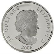 Canada 30 Dollars National War Memorial 2006 Proof KM# 669 30 DOLLARS ELIZABETH II SB 2006 coin obverse