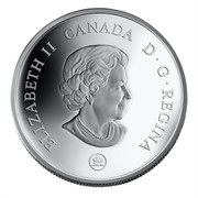 Canada 30 Dollars Niagara Falls 2007 Proof KM# 739 ELIZABETH II CANADA D ∙ G ∙ REGINA coin obverse
