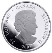 Canada 30 Dollars Totem Pole 2006 KM# 590 30 DOLLARS ∙ CANADA ∙ ELIZABETH II 2005 SB coin obverse
