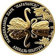 "Belarus 50 Roubles Narochansky National Park - Mute Swan 2006 Proof KM# 145 НАЦЫЯНАЛЬНЫ ПАРК ""НАРАЧАНСКІ"" ЛЕБЕДЗЬ-ШЫПУН coin reverse"