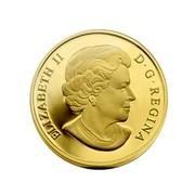 Canada 500 Dollars An Aboriginal Story 2013 Proof KM# 1495 ELIZABETH II D ∙ G ∙ REGINA coin obverse