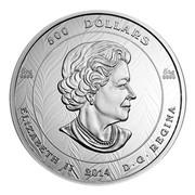 Canada 500 Dollars National Aboriginal Veterans Monument 2014 Proof KM# 1766 500 DOLLARS 5 KG 9999 5 KG 9999 ELIZABETH II 2014 D ∙ G ∙ REGINA coin obverse