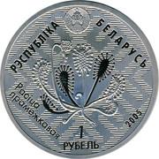 Belarus Rouble Bogs of Almany 2005 Proof KM# 97 РЭСПУБЛІКА БЕЛАРУСЬ РАСІЦА ПРАМЕЖКАВАЯ 1 РУБЕЛЬ 2005 coin obverse
