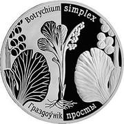 Belarus Rouble Least Moonwort 2014 KM# 478 BOTRYCHIUM SIMPLEX ГРАЗДОЎНІК ПРОСТЫ coin reverse