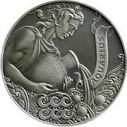 Belarus 1 Rouble Aquarius 2014 Antique finish KM# B457 AQUARIUS coin reverse