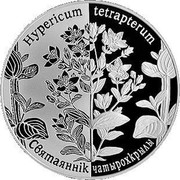 Belarus 1 Rouble Square-stemmed St. John's Wort 2014 Proof-like KM# A459 HYPERICUM TETRAPTERUM СВЯТАЯННІК ЧАТЫРОХКРЫЛЫ coin reverse