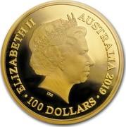 Australia 100 Dollars Dolphin 2019 ELIZABETH II AUSTRALIA 2019 100 DOLLARS coin obverse