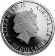 Australia 100 Dollars Wedge Tailed Eagle 2015 ELIZABETH II AUSTRALIA 100 DOLLARS IRB coin obverse